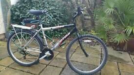 Optima Storm bicycle