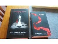 Girls books - Stephanie Meyer books