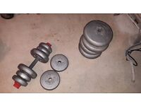 Barbell X 1 and Dumbells x 2 Plus assorted weights. Orbatron, Fit For Life.