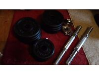 25kg (excl weight of bars) Dumbbell set by Songmics