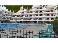 Apartment for rent in Los Cristianos, Tenerife, only available 23rd May to 6th June 2017