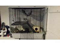 Very large cage Rat/Hamster/Guinea pigs/Bird