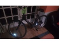 XL size Man Bike for sale GIANT Expression