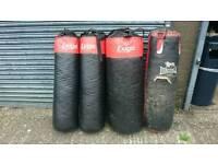 Exigo boxing punch bags