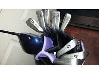 dynasty golf set all irons and taylormade driver selling at 78