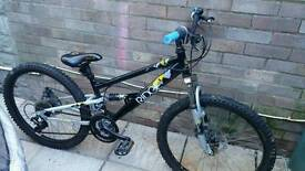 Apollo ridge 24inch bike