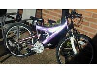 Dual suspension ladies bike