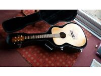 Hand made acustic guitar