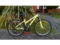 UK Ladies Ridgeback MX2 bike £95
