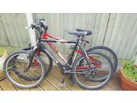2 Adult mens bikes for sale