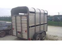 Ifor williams ta 5 8ft livestock trailer