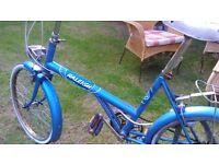 Classic vintage ladies bike. Bicycle .Cycle