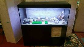 4ft tropical fish tank for sale