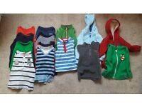BUNDLE OF BOYS TOPS/HOODIES (Age 2-3)