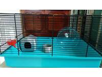 Pets at home hamster cage