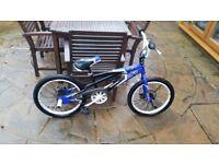 Boys blue muddy fox bmx bike