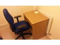 Professional Office Chair, Desk with Keyboard Pull out and Table lamp