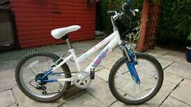 Girl's Raleigh 'Shimmer' 5 Gear Bicycle