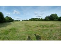 1.7 acre well drained grazing Paddock for rent near Liphook