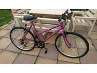 Ladies to teenage suit tallier rides as large frame hardly been used