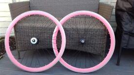 Singlespeed Bicycle Wheels