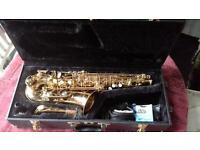 alto saxophone in case with accessories