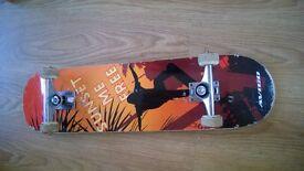 job lot street surfing waveboard skateboard , rollerblades, & long board outdoor sports toy bundle