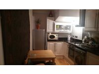 Bright one bedroom flat 1 minute from Seven Sisters tube, 13 mins Oxford Circus by tube