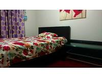 Double bedroom available to rent for 300 pcm