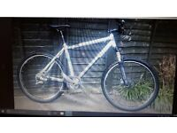 Stolen - Mens mountain bike. White Kenesis Maxlight. Netherfield Fri 24th March. REWARD