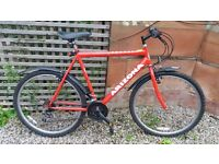 Men's Bicycle - Mountain Bike - Excellent Condition - Moving Home