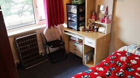 single room in lansdowne for rent
