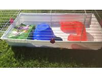 Guinea pig indoor large cage
