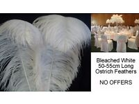 50 - 55cm Large Bleached White Ostrich Feather Plumes