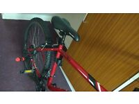 BICYCLE FOR SELL - 6 MONTHS OLD IN Macclesfield