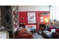 Room available Bethnal Green, Good value, Warehouse, sharing with 3 people and a cat.