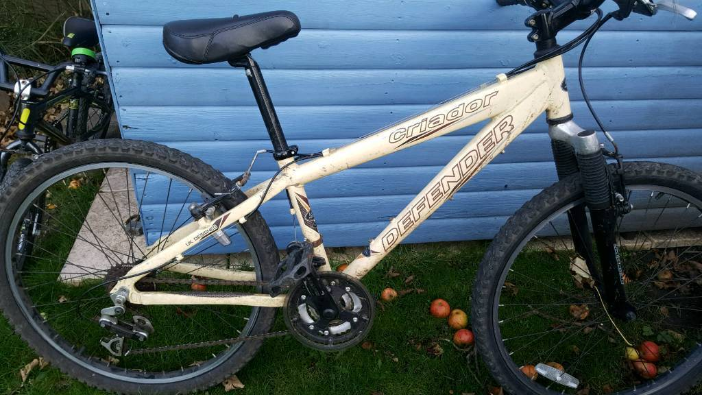 Women's / Boys mountain bike