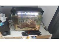 Marine fish tank full set up and fish