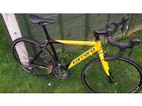 CARRERA TDF Road Bike Limited Edition, Shimano CLARIS version, RRP £449 Fully Serviced By Shop!