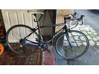 Jamis Full Carbon Road Bike