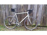 Large frame mens specialized Road bike good working order bargain
