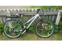 Airlite mountain bike by Raleigh