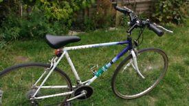 """Pioneer Raleigh Vintage Racing Bike 21"""" Frame Town Bike. Tyres New"""