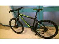 Focus blackforrest bike