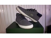Lacoste shoes Size 8 NEW!!!