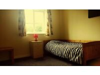 Room to Rent DUNSTABLE