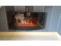 Coal effect electric fires