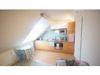 Quiet , light airy self contained flat in Westbury Park for single person