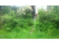DOM'S gardening services