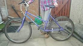 Bike Raleigh Calypso